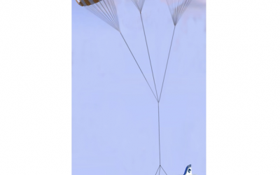 Bye Aerospace Selects Aviation Safety Resources to Develop Next-Generation Parachute Recovery System for eFlyer 2